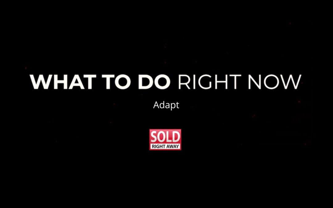 What To Do Right Now Series – Adapt